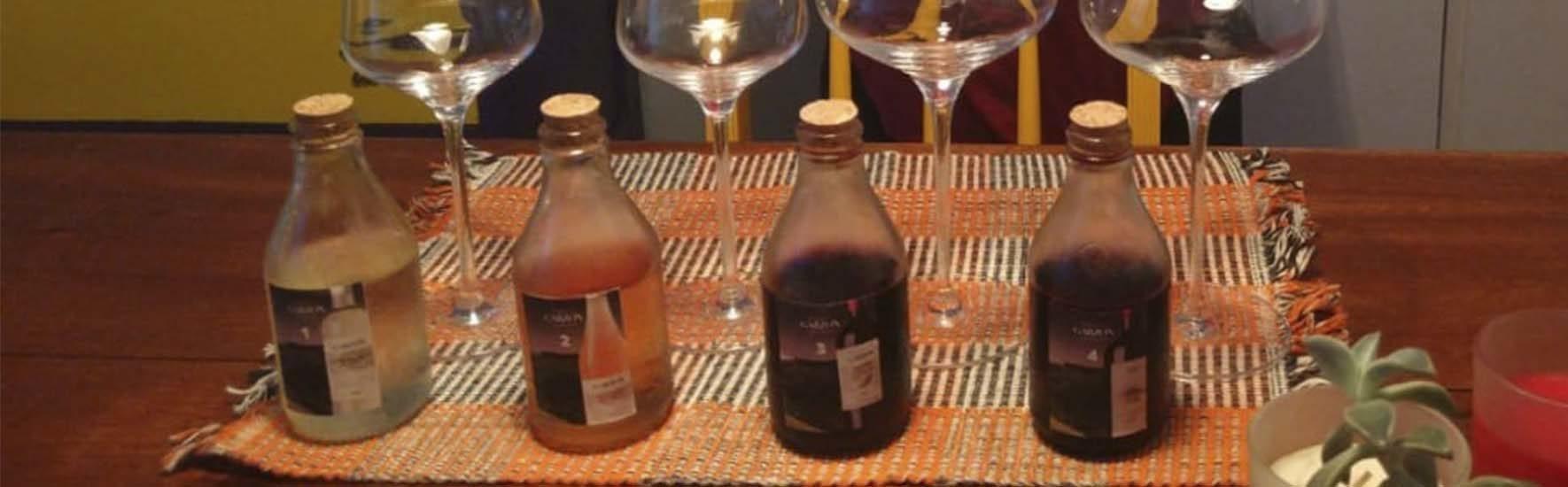 Degustação de vinhos do Uruguai Bodega Garzón